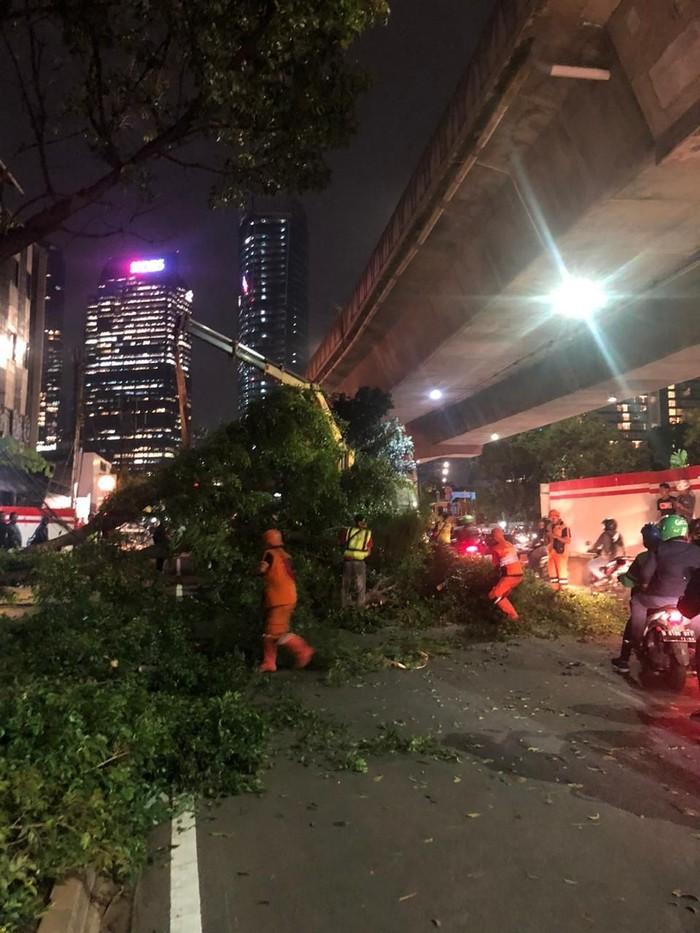 Pohon tumbang di Tebet, Jaksel (Foto: Twitter @TMCPoldaMetro)
