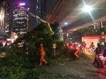 Ada Pohon Tumbang di Tebet Jaksel, Lalin Tersendat