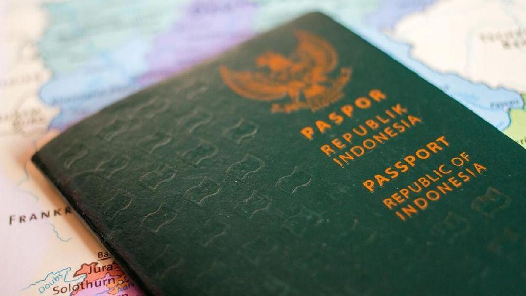 Jenis-jenis Paspor di Indonesia dan Perbedaan Warnanya