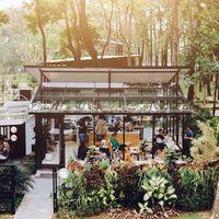 Weekend di Bogor Sempatkan Ngopi di 5 Tempat Instagramable Ini