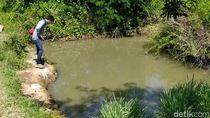 Dua Bocah Ditemukan Tewas Tenggelam Berpelukan di Blumbang Sawah