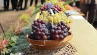 Tercatat Dalam Al-Quran, Buah Anggur Juga Jadi Hadiah untuk Rasulullah SAW