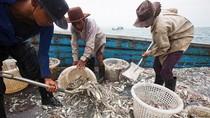 Industri Perikanan Thailand Masih Dihantui Perbudakan Manusia