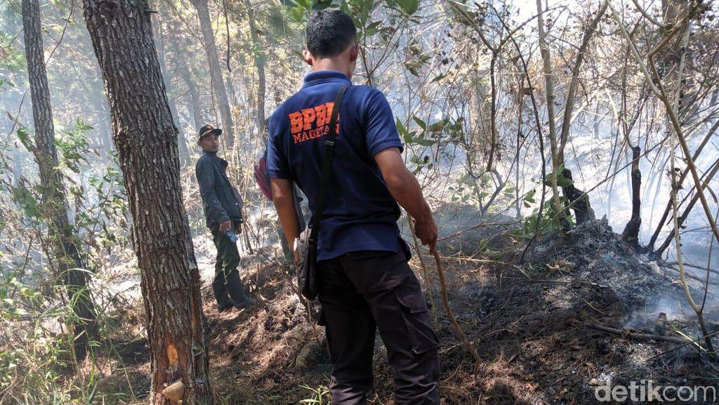 Pemadaman Kebakaran Gunung Lawu Terkendala Badai, Api Meluas