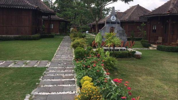 Penginapan sekitar Borobudur