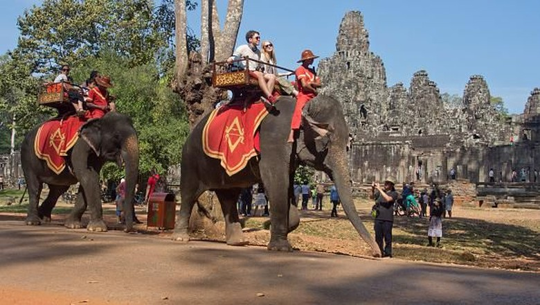 Gajah di Angkor Wat (Getty)