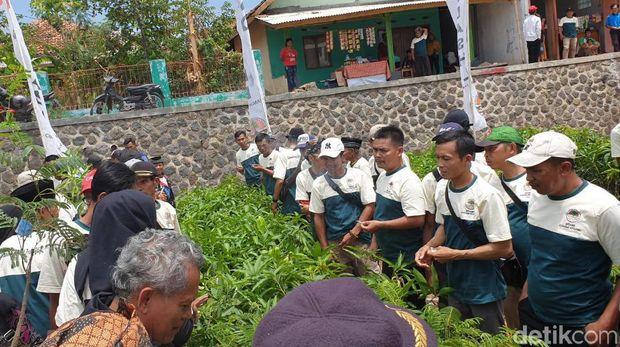 Jadikan KEK Pariwisata, Kawasan Jatigede Ditanami Sejuta Pohon