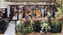 Kafe Instagramable di Bogor Hingga Kangkung Dianggap Gulma