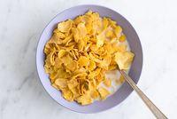 Pro dan Kontra Makan Sereal Gaya #cerealchallange TikTok
