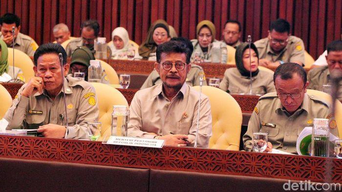 Mentan Syahrul Yasin Limpo/Foto: Lamhot Aritonang