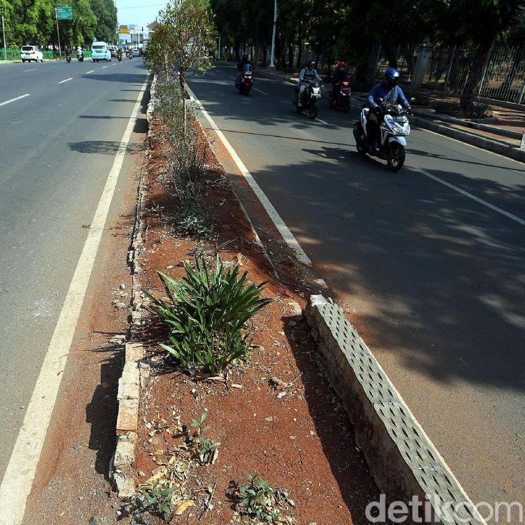 Taman Pembatas Jalan Jatinegara Barat Bagai Tak Terawat