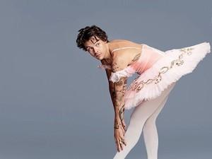 Harry Styles Pakai Rok Balerina, Fans Terpecah Belah