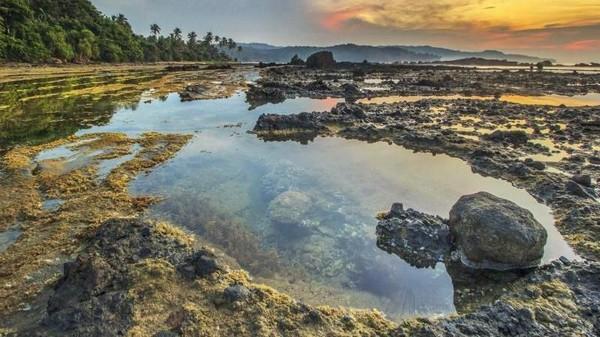 Banten juga memiliki lokasi surfing andalan lainnya, yakni Pantai Sawarna. Berada di Desa Wisata Sawarna, Banten, ombak pantai ini juga cocok untuk berselancar. (Teguh Tofik Hidayat)