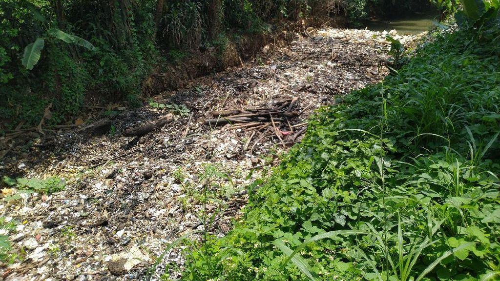 Warga Khawatir Sampah Kalibaru Bikin Banjir, Pemkab Bogor: Kami Pantau