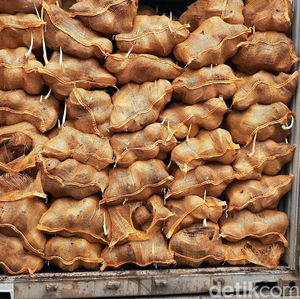 25 Kontainer Kelapa RI Ditolak Thailand Gara-gara Bertunas