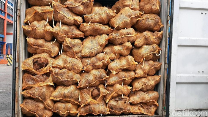 25 kontainer kelapa ekspor asal Sumatera Selatan ditolak Thailand karena bertunas, dan kondisi itu tidak sesuai ketentuan yang berlaku.
