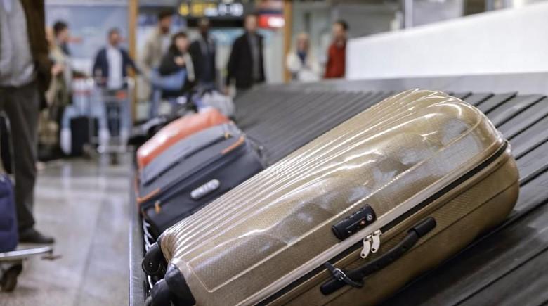 Ilustrasi koper di bandara (iStock)