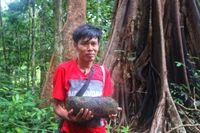 Hari Suroto yang mengangkat Batu Mawi