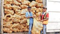 Untuk mengurangi kerugian, kelapa itu rencananya akan diolah lagi menjadi produk yang memiliki nilai jual. Apakah menjadi arang atau produk kemasan dari turunan kelapa.