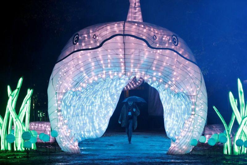 Lentera di sini dibuat dalam ukuran besar. Tingginya bisa mencapai 10 meter dengan panjang hingga 30 meter(Foto: REUTERS)