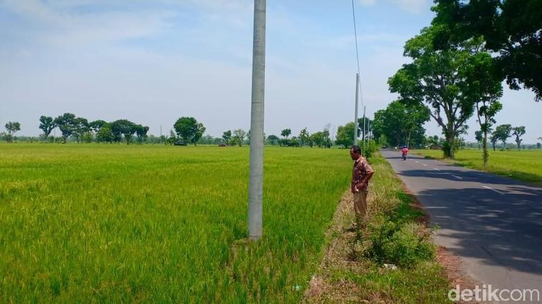 Petani di Madiun Sesalkan PLN yang Pasang Tiang Listrik Tanpa Izin