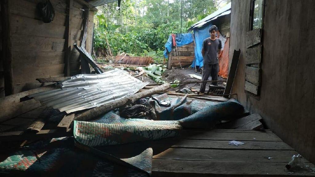 35 Ekor Gajah Turun ke Perkampungan Bener Meriah, 2 Rumah Rusak