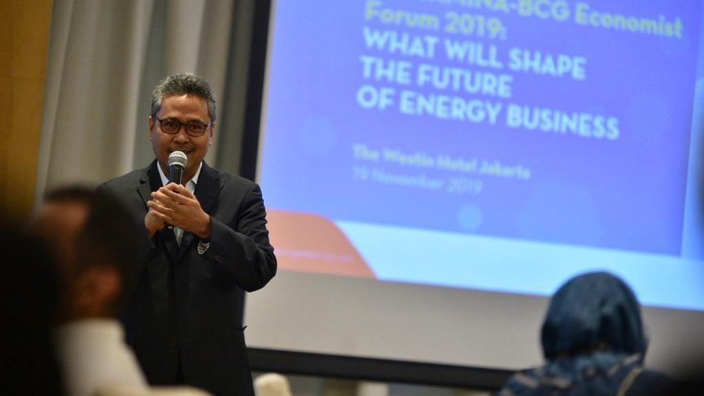 Ekonom Waspadai Transisi Masif di Sektor Energi
