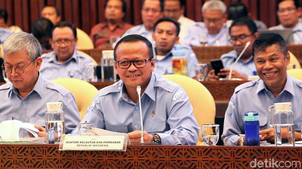 Alasan Edhy Prabowo Mau Cabut Larangan Ekspor Benih Lobster