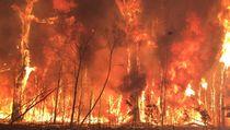 Mukjizat Nabi Ibrahim, Tak Mampu Dilahap Api