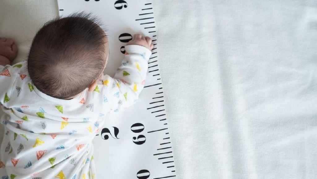 Masih Hidup! Bayi Perempuan Ditemukan di Bawah Fondasi Rumah di Boyolali