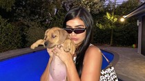 Foto: Melihat Sosok Teman Kencan Tyga yang Mirip Kylie Jenner