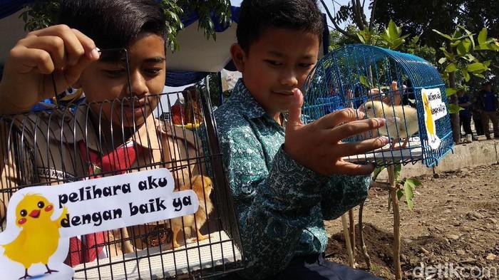 Pemkot Bandung memulai progam chickenisasi atau bagi-bagi ayam pada pelajar untuk cegah kecanduan gadget. (Mochamad Solehudin/detikcom)