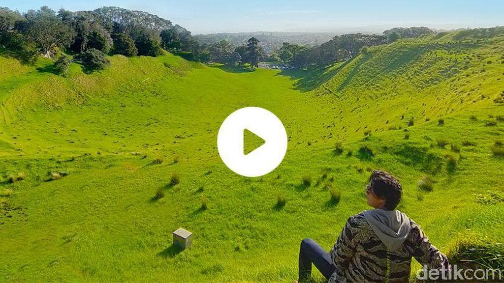 Hidup dan Bernafas Secara Alami di Alam Kiwi
