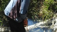 Foto Terkini Jalur Pendakian Gunung Semeru