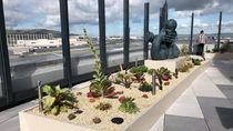 Ini 5 Bandara Tersehat & Paling Membahagiakan di Dunia