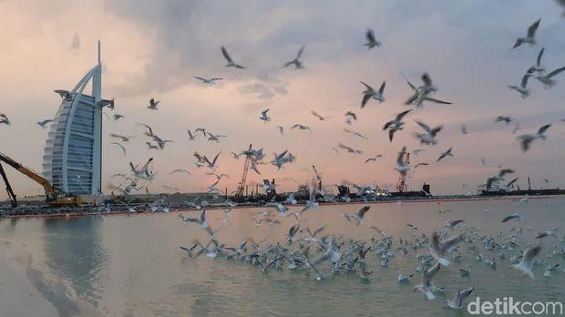 Pantai Jumaerah Burj Al Arab