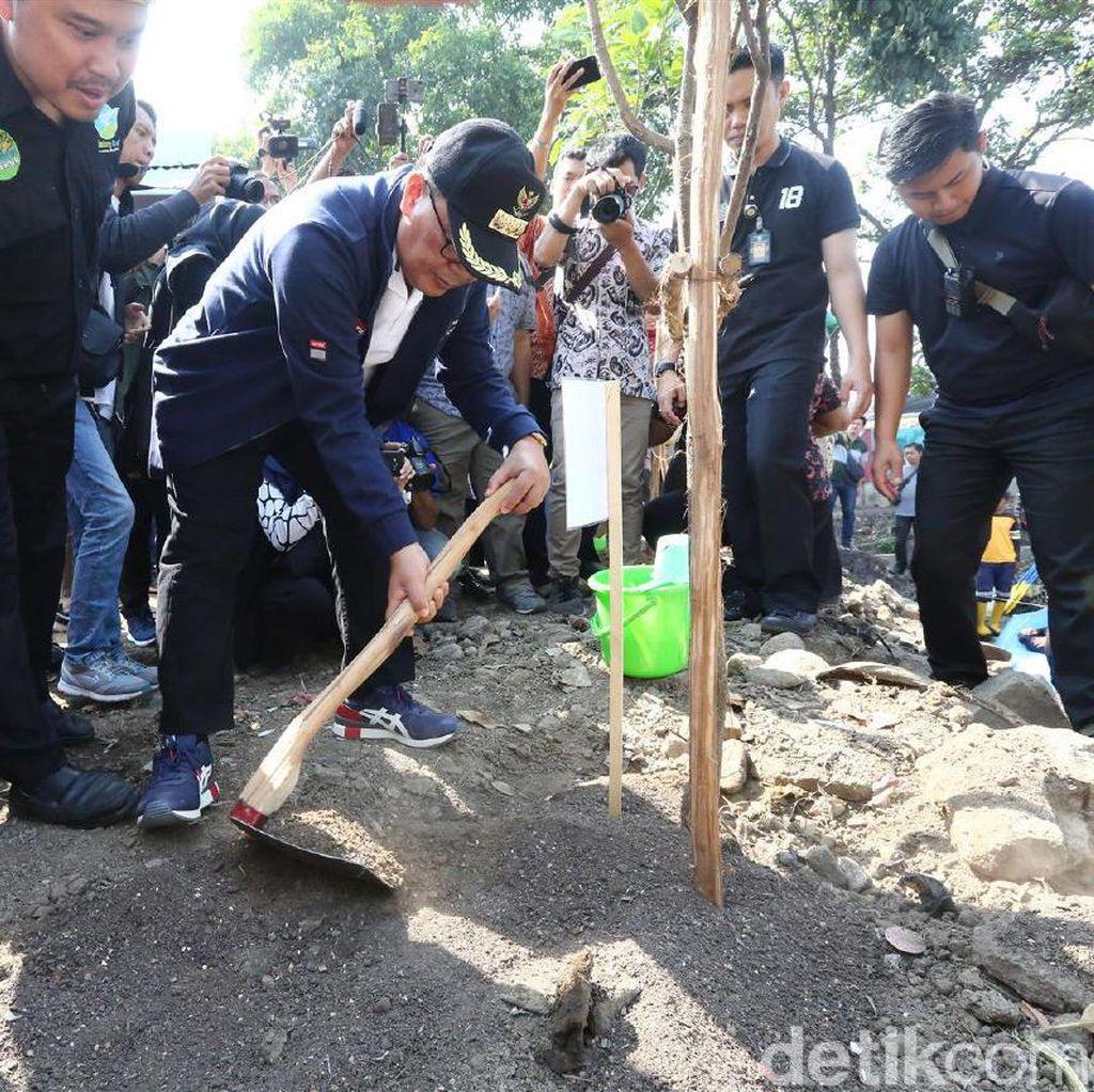 Hijaukan Bandung, Pemkot Sebar 15 Ribu Bibit Pohon untuk Ditanam