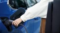 Luhut Bilang di Ibu Kota Baru Semua Mobil Listrik