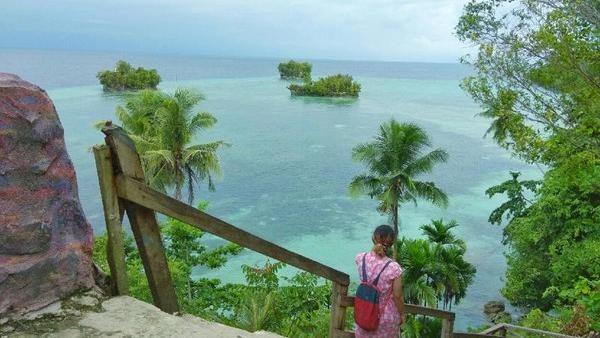 Pulau Biak merupakan sebuah pulau karang yang berada di Papua. Pulau ini terpisah dari pulau Papua Daratan. Letaknya berada di Teluk Cendrawasih. Melati Raya Sihotang/dTraveler