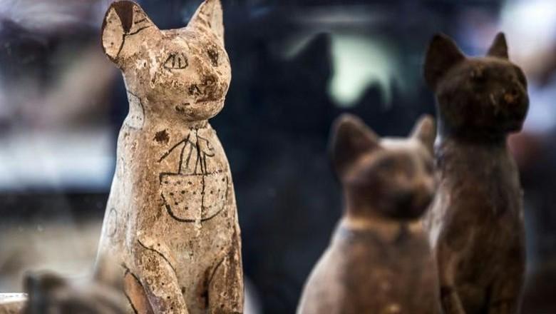 Mumi anak singa dan kucing dari era Mesir Kuno. (Khaled Desouki/AFP Photo)