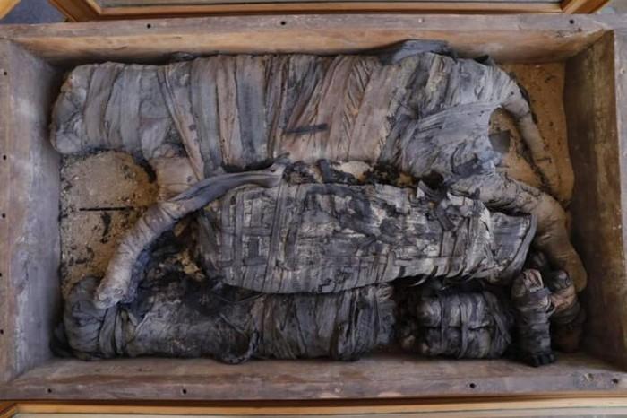 Salah satu mumi yang ditemukan. (Foto: Live Science)