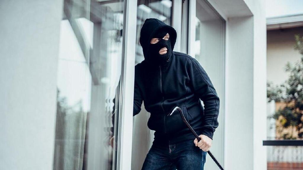 Waduh! Komplotan Pencuri Ini Bawa Kabur 15 Ton Ubi Jalar