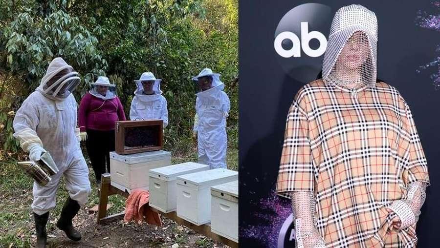 Penampilan Billie Eilish yang Disebut Mirip Peternak Lebah