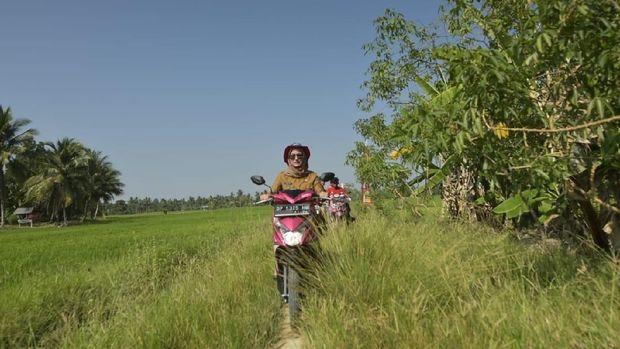 Bupati Luwu Utara, Sulsel, Indah Putri Indriani mengecek ancaman hama dan ketersediaan air bagi tanaman padi di wilayahnya.