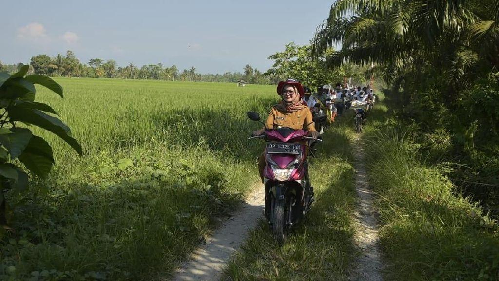Bupati Luwu Utara Naik Motor ke Sawah, Cek Produksi Padi Petani