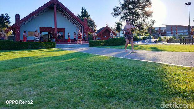 Mengenal Lebih Dekat Kebudayaan Suku Maori