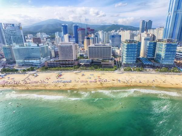 Pantai Haeundae memilki panjang 1,5 km dan lebar 30-50 meter. Pantai ini selalu ramai oleh masyarakat Korea dan turis mancanegara, apalagi saat musim panas tiba. (iStock)
