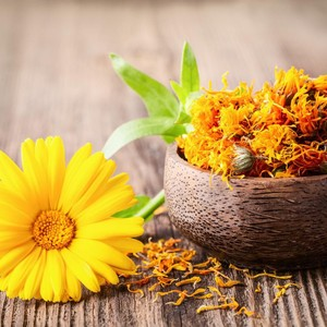 Merek Lokal Rilis Skincare Anti Aging dengan Kandungan Bunga Marigold