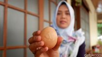 Peternak Ini Kaget, Sebut Ada Lafaz Allah di Telur Ayamnya
