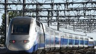 Cerita Haru di Shinkansen